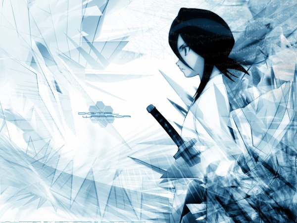 Rukia vs Tohru
