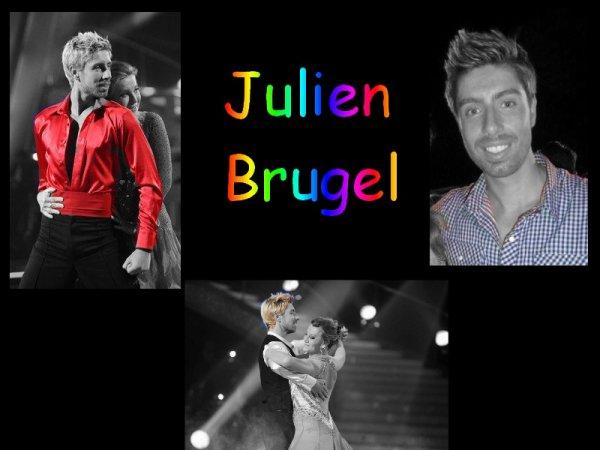 Julien Brugel