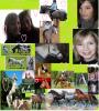 pony-love02