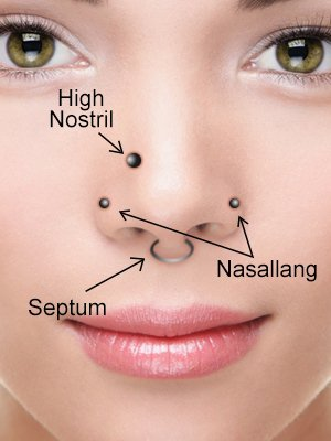 Nose piercing - Naris, Septum, and Connection Piercings