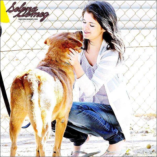 1 NSELENA.SKYROCK.COM , votre source d'actualité sur Selena gomez .1