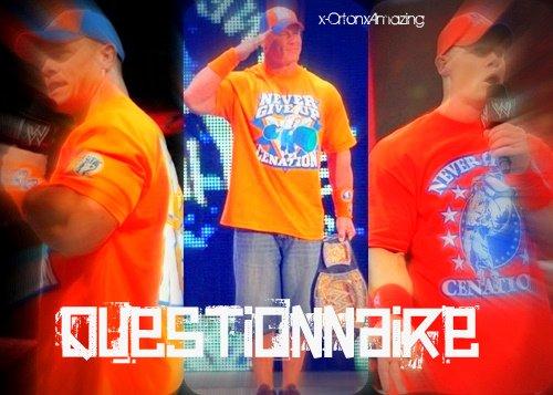 Questionnaire Sur John Cena