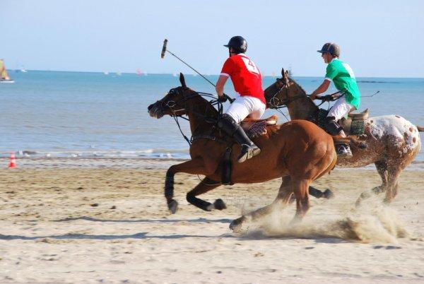Match de polo sur la plage !