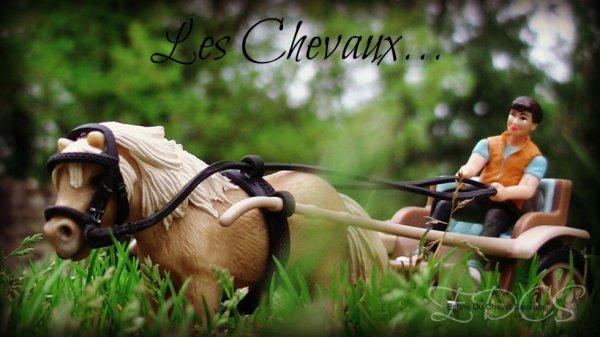 Les Chevaux .