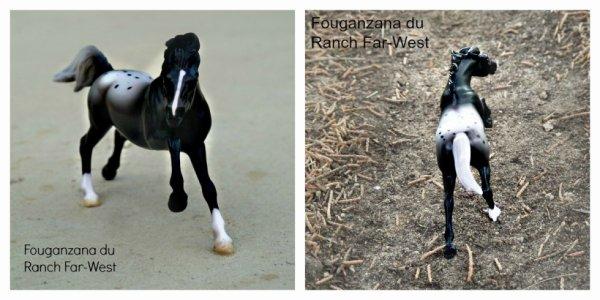 Fouganzana