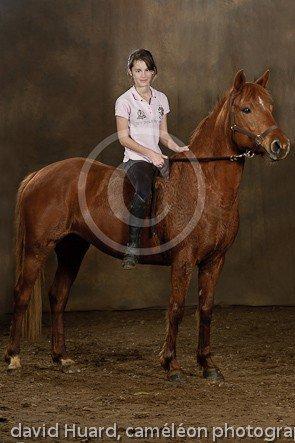 """"""" Pour monter à cheval, il n'y a pas besoin de mots, c'est une étreinte charnelle qui alimente nos rêves. """" Bartabas."""