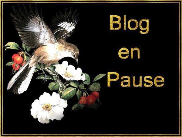 Blog en pause !