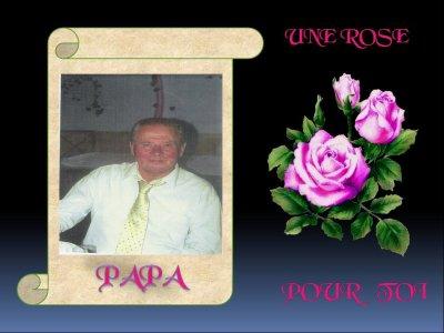 Mon Cher Et Tendre Papa Premier Anniversaire Sans Toi