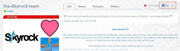BLOGS & PROFILES : The things you 'like' on Skyrock appear on Facebook!