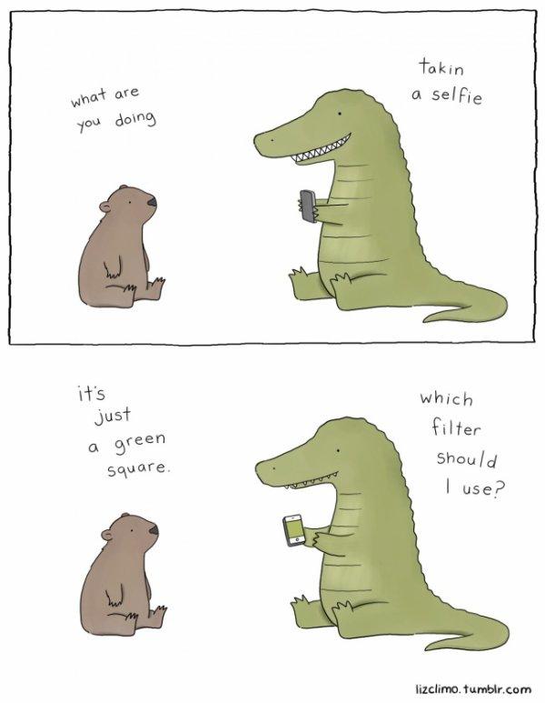 Funny Cuteness!