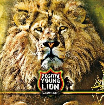 Positiv Young Lion