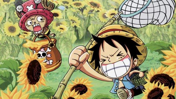 Luffy respecte la nature !!!