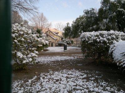 Toulon sous la neige !!!