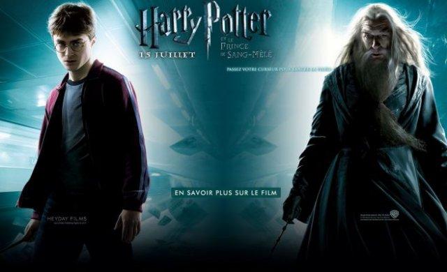 100% Harry Potter