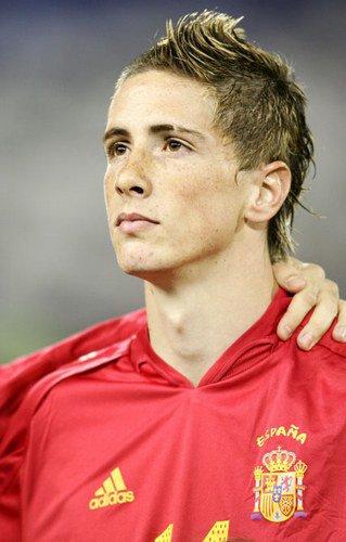 Biographie de Fernando Torres