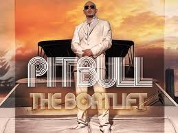 pitbull le plus bon son ?