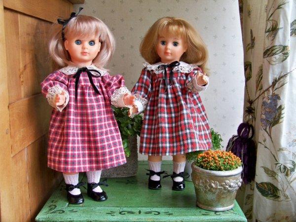 Nous sommes deux soeurs jumelles.....