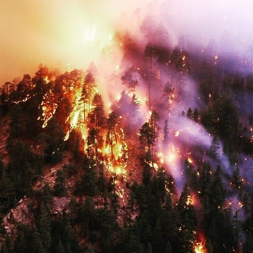 Feu en Californie