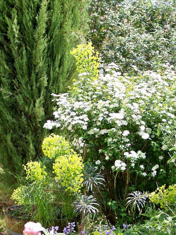 Un petit tour de jardin
