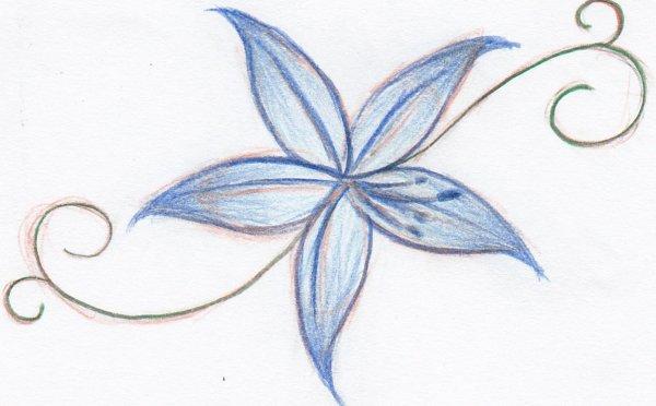 Fleur de Lune (2)