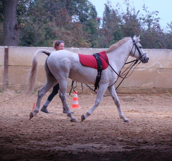Séance 23 Septembre 2010.