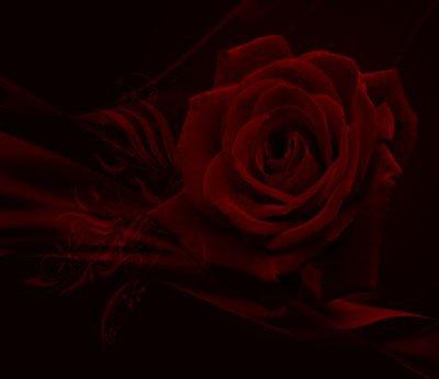 ♥ ♥ ♥  Lara Fabian  ♥ ♥ ♥   Je T'aime   ♥ ♥ ♥