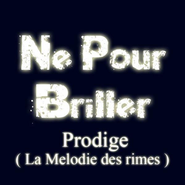 La melodie des Rimes / Né Pour Briller (2011)