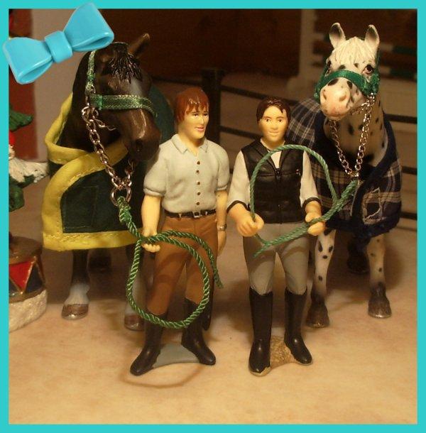 Centre Equestre Des Schleich-S