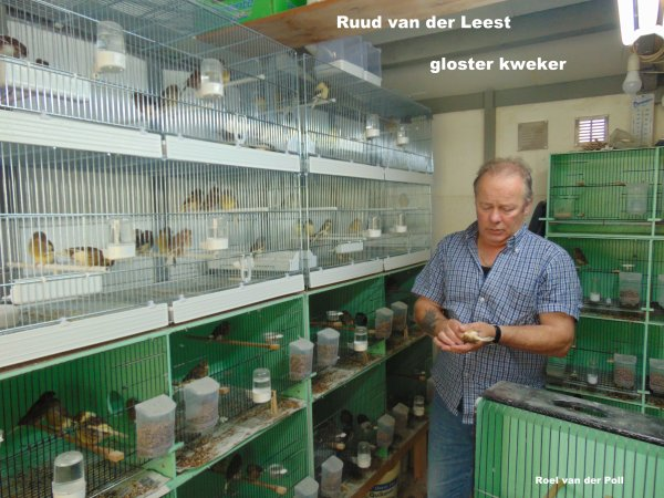 Gloster kweker Ruud van der Leest .