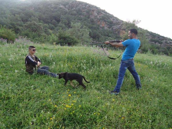 mon amie qui s'etai inrvaie prsk en a rien chasser est il a mais le fusil sur moi  ohhhhh je veut mourire