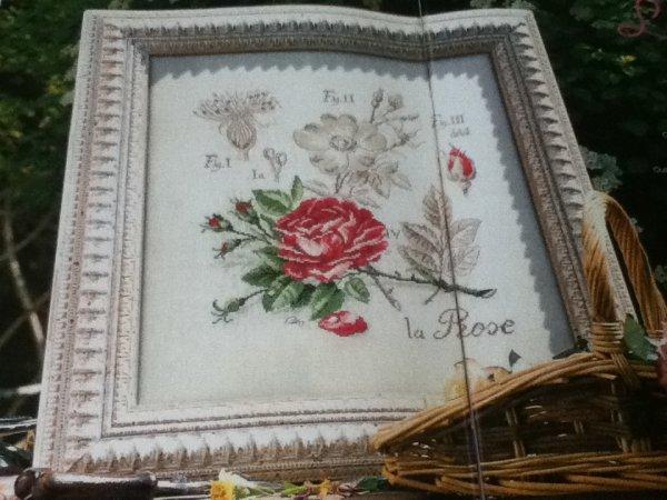grille  N° 12 la rose