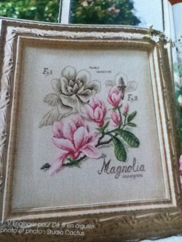 grille  N° 14 le magnolia