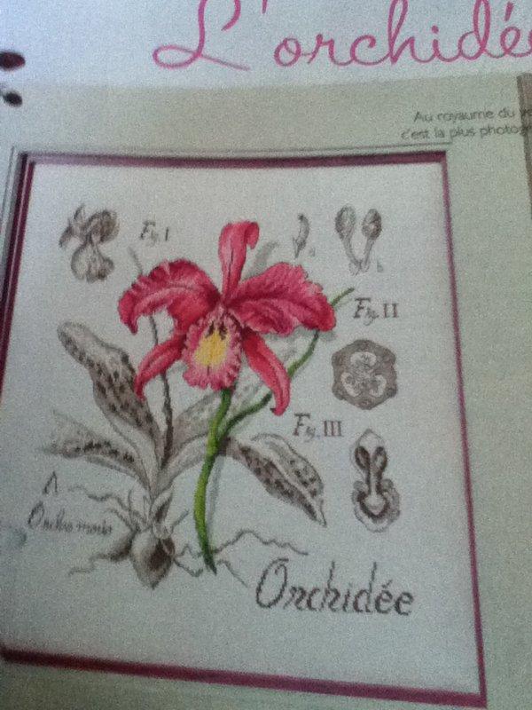 grille  N° 15 l'orchidée