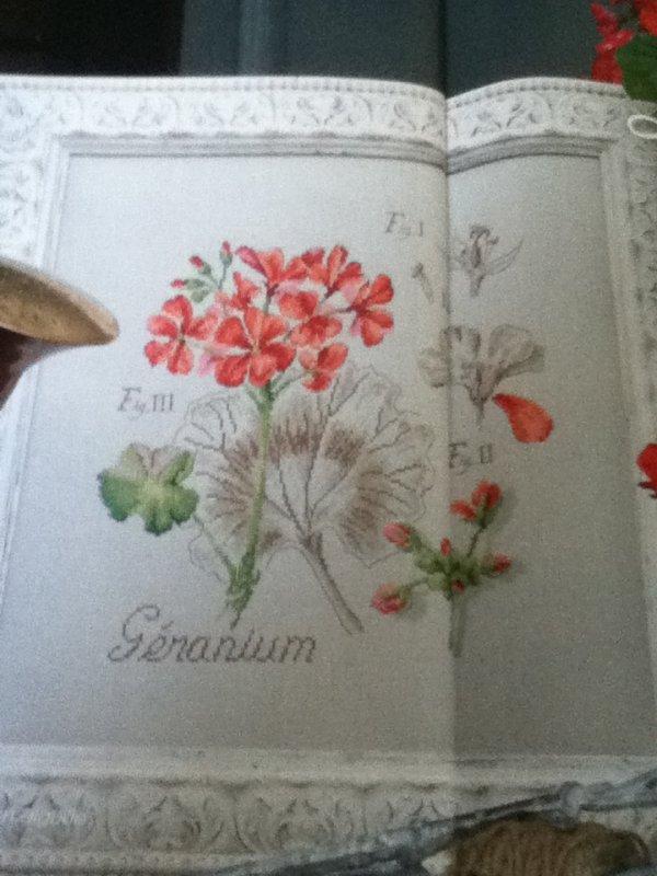 grille  N° 35 geranium