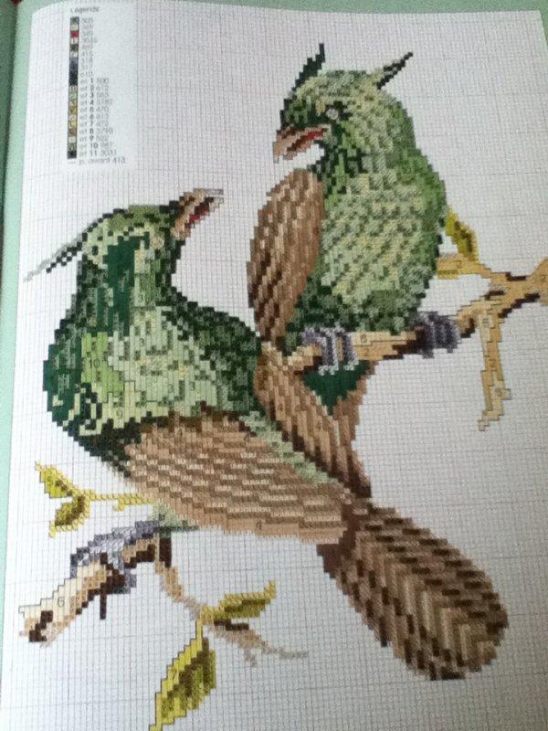 grille  N° 113 perroquet N°2