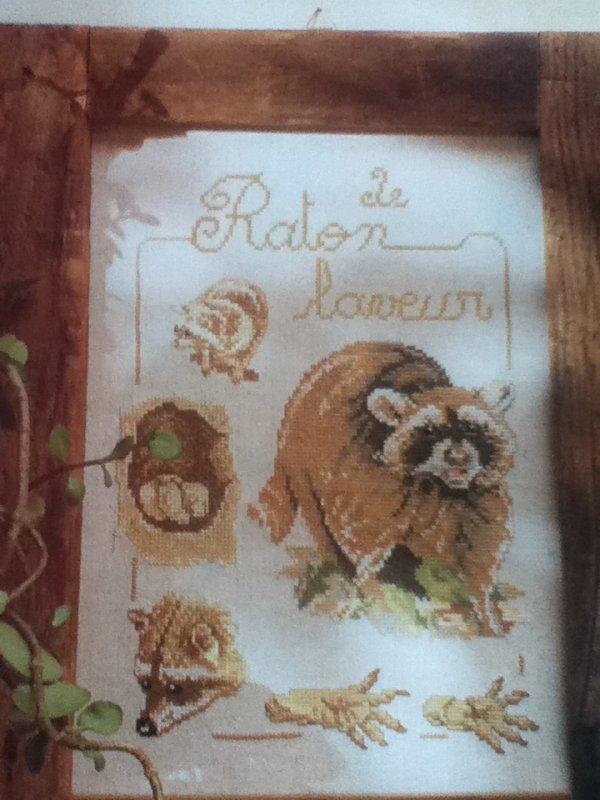 N°227 RATON LAVEUR