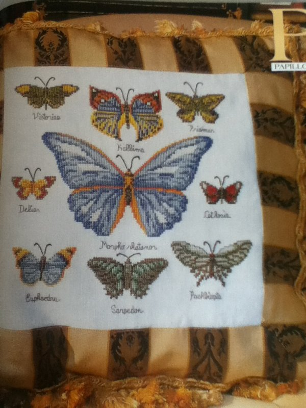 N°314 PAPILLONS