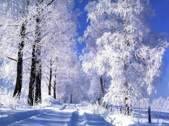 J'ai compris, aujourd'hui qu'il y avait une fin à tout. Le bonheur s'en est allé et la neige a fondu.