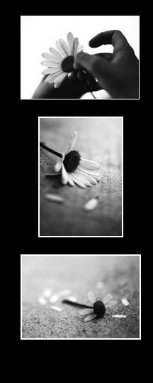 Aimer, un sentiment horrible, dont personne ne veux guérir, à crois que les gens aimes souffrir..
