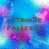LeTrioDeFolles57