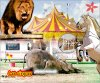 Montage pour Earth-Animals, les cirques
