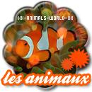 Photo de xX-Animals-World-Xx