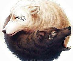 L'image du jour #9 Dessin de loups !!!