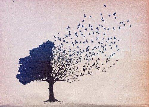 L'image du jour #15 Dessin d'arbre ♥