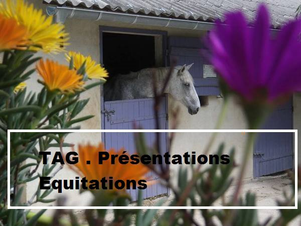 TAG #1 Présentations Equitation. ♥ ♥ ♥ ♥ ♥