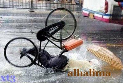 alhalima