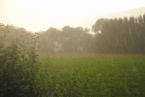 """""""Après la pluie, le beau temps"""""""