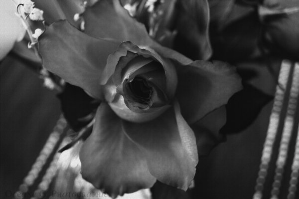 « flower »