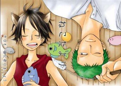 Neko Luffy x Zoro