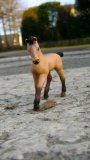 Photo de schleich-pony